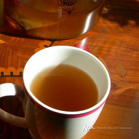 タヒボ茶・タヒボNFD(天然樹木茶)